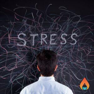 Wat doe jij als je gestrest bent?